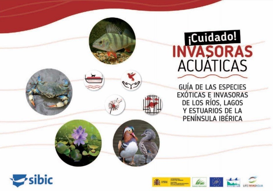 Guía de especies exóticas invasoras acuáticas ibéricas – Life Invasaqua